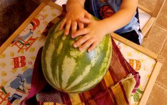 watermelon_dry