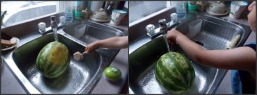 watermelon_sink