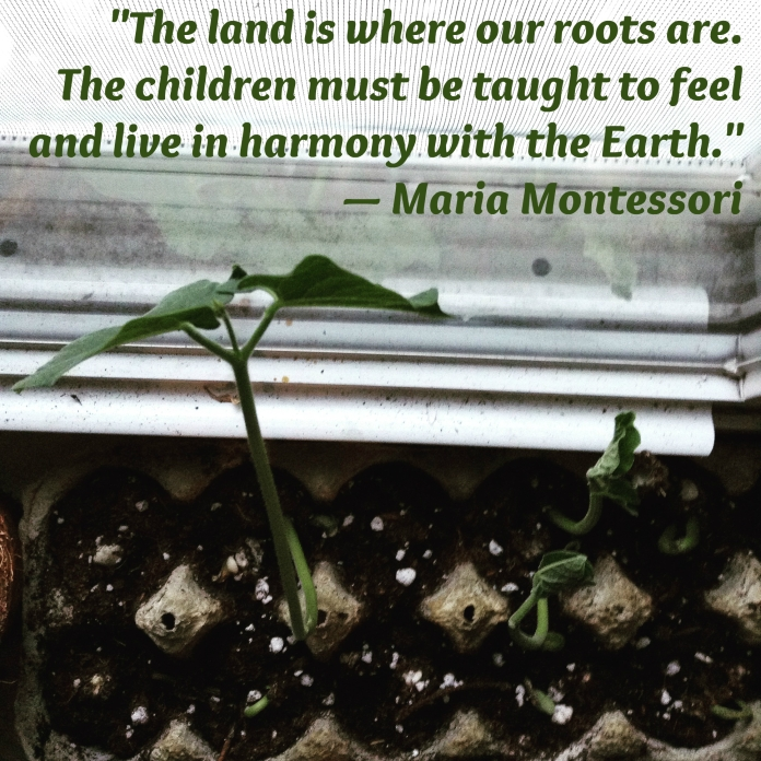 seedling - Montessori nature quote
